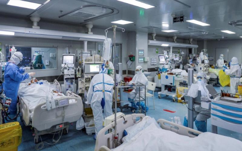 Tədris Cərrahiyyə Klinikasının reanimasiya şöbəsinin bütün heyəti xəstəxanaya yerləşdirilib