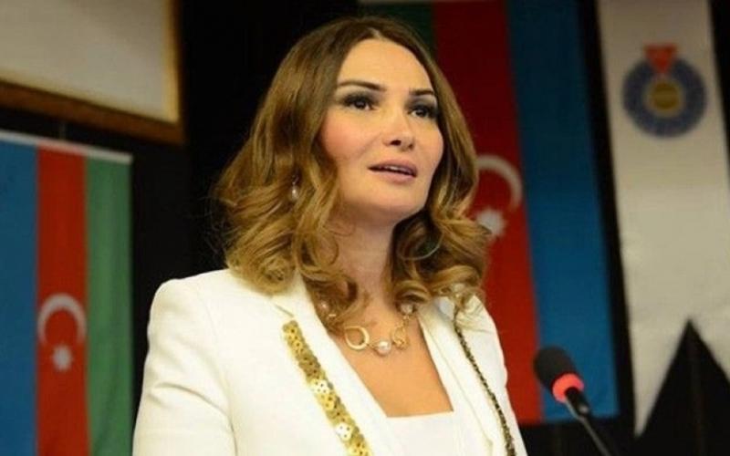 Millət vəkili Türkiyədən gəlmiş həkimlərə təşəkkür edib